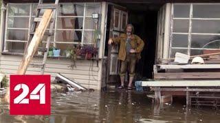 Уровень паводка в районах Хабаровска достиг почти 6 метров - Россия 24