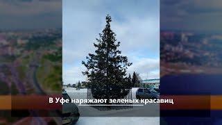 UTV. Новости центра Башкирии за 23 ноября