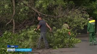 В Уфе убирают последствия урагана