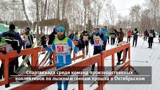 UTV. Новости запада Башкирии за 10 февраля