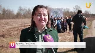 """Новости UTV. К акции """"Зеленая Башкирия"""" присоединился Стерлитамак"""
