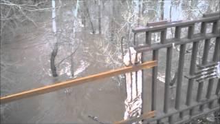Паводок 2016 на реке Белой, город Ишимбай, Башкирия.