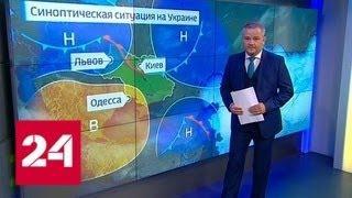 Погода 24. Как лето повлияет на украинские выборы - Россия 24
