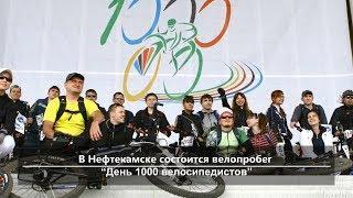 UTV. Новости севера Башкирии за 16 мая (Нефтекамск, Дюртюли, Янаул, Татышлы, Верхнеяркеево)