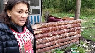 Радий Хабиров не справился с черными копателями плиточного камня