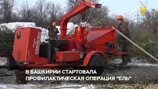 Новости UTV. В Башкирии стартует особая операция «Ель»