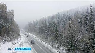 Заморозки и дождь со снегом: в Башкирии похолодает до –4 градусов