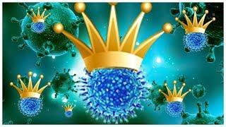 Пандемия коронавируса продлится один-два года! COVID-19 (!)
