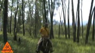 Конный туризм в Башкирии 1часть