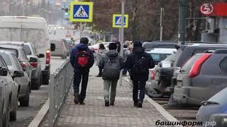 В Башкирии за первые дни акции Стоп суррогат поступило более 800 обращений
