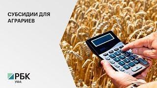 Аграрии РБ получат компенсации за прошлогоднюю засуху