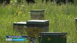 Башкирский парламент предложил отвечать за пестициды Россельхознадзору