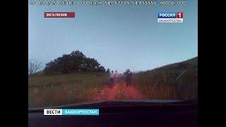 В Башкирии перестрелка с участием сотрудников ГИБДД попала на видео