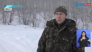 Южноуральцы заявляют о нападениях волков