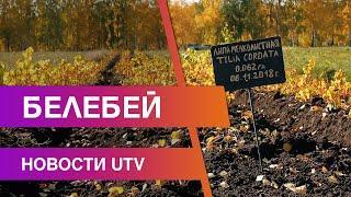Новости Белебеевского района от 06.10.2020