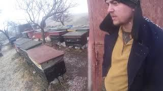 Снег, 28 марта 2019, дневник погодной ситуации на пасеке.