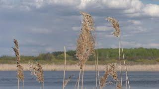 река Дёма г.Давлеканово