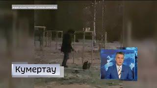 В Кумертау украли лампочки из новогодней гирлянды, в Хайбуллинском районе идёт капремонт домов