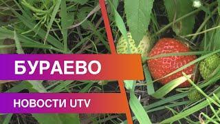 Новости Бураевского района от 17.09.2020