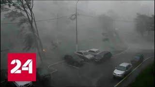 Ураган в Москве: какие меры предприняли МЧС? 60 минут от 09.08.19