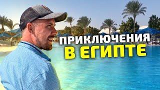 Хургада 2020 сегодня | отдых Египет 2020 | Петанк | Бочче| обзор desert rose resort | 4 день
