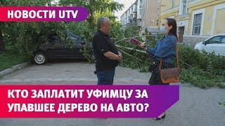 UTV. Дерево упало на автомобиль уфимца, стоящий в дворе. Разбираемся, кто будет возмещать ущерб