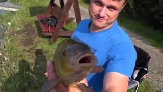 Весенняя ловля форели. Рыбалка в Лепсари. Обзор