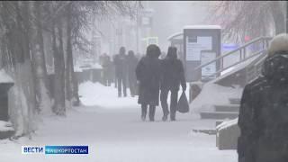 Жителей Башкирии предупредили о сильном ветре и ухудшении видимости