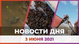 Новости Уфы и Башкирии 03.06.21: смерть пчел, мусорный коллапс и 70-километровый пешеходный маршрут