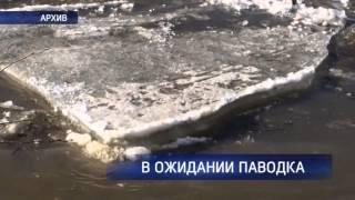 Поднялся уровень воды в реке Урал. Синоптики прогнозируют паводок больше обычного