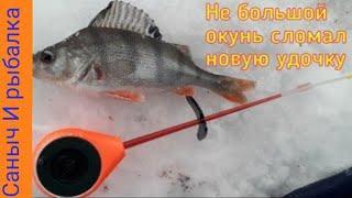 ЗИМНЯЯ РЫБАЛКА 2019/ОКУНЬ СЛОМАЛ НОВУЮ БАЛАЛАЙКУ/winter fishing 2019 Perch!!