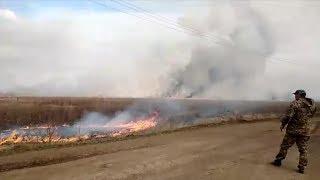 Возле аэродрома Первушино горят поля