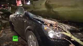 Ураган «Никлас» в Германии унес жизни семи человек