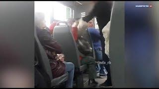 В Уфе уволили водителя, обматерившего пассажирку в автобусе