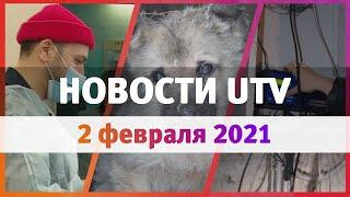 Новости Уфы и Башкирии 02.02.21: заповедник для собак, счета за тепло и парикмахерская для бездомных