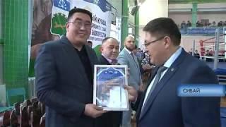 Открытый Кубок главы администрации ГО г. Сибай по смешанным боевым единоборствам (ММА)