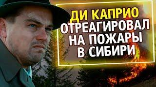 UTV Из России с любовью. Ди Каприо отреагировал на пожары в Сибири