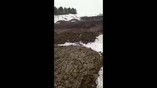 Территория отходов 3  Благовещенск РБ