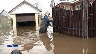 Жители деревни Карпово уже неделю живут в затопленном доме