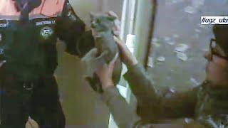 Спасатели вызволили из заточения котенка | Ufa1.RU