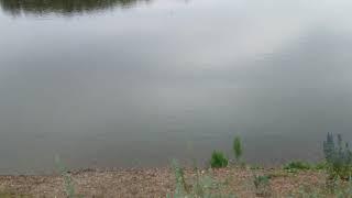 Салават река Белая