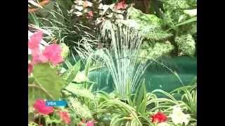 Башкирский лимонарий может быть объявлен памятником природы