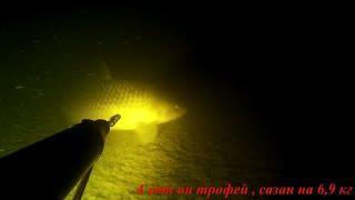 Очередная подводная охота состоявшаяся в ночь с 04.09.2021 на 05.09.2021