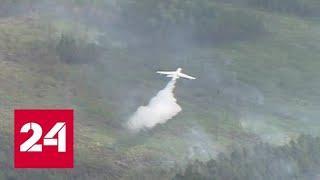 Весь световой день без перерывов: как тушат лесные пожары в Красноярском крае - Россия 24