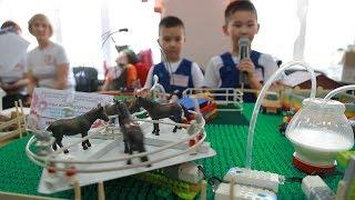 UTV. Пятилетние дети из Башкирии придумали, как заработать на опилках и помочь экологии