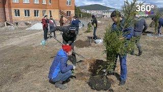 Акция «Зеленая Башкирия»  ели   в дар верующим