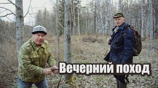 Охота на вальдшнепа! Тяга. (лес, охота, вальдшнеп)