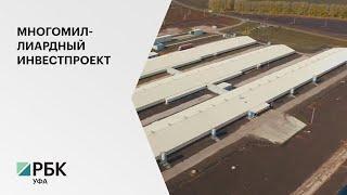В Белебее возведут крупнейший в РФ мясоперерабатывающий комбинат