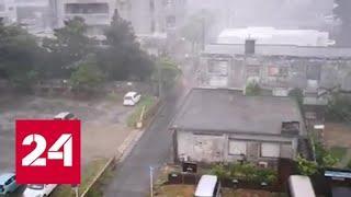 """В Китае объявлен наивысший уровень опасности в связи с приближением тайфуна """"Лекима"""" - Россия 24"""