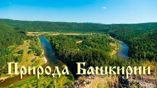 Кривая Лука на Белой реке | Агидель 2016